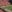 What a great day in Athens. Got to talk with Coach Dooley, went to the DAWG Walk and now watching the Dawgs take on Vand...
