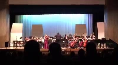 Concerto in C minor - BachPerformed by Westminster High School Honors OrchestraFeaturing Kate on Viola